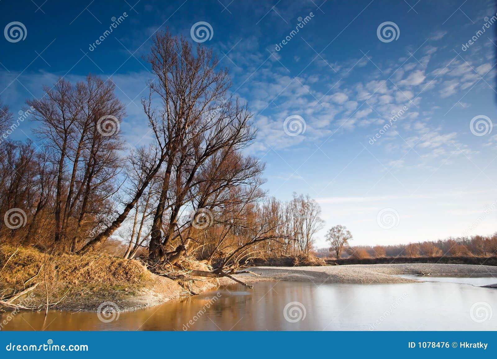 De foto van het landschap die langs de rivier donau in oostenrijk op