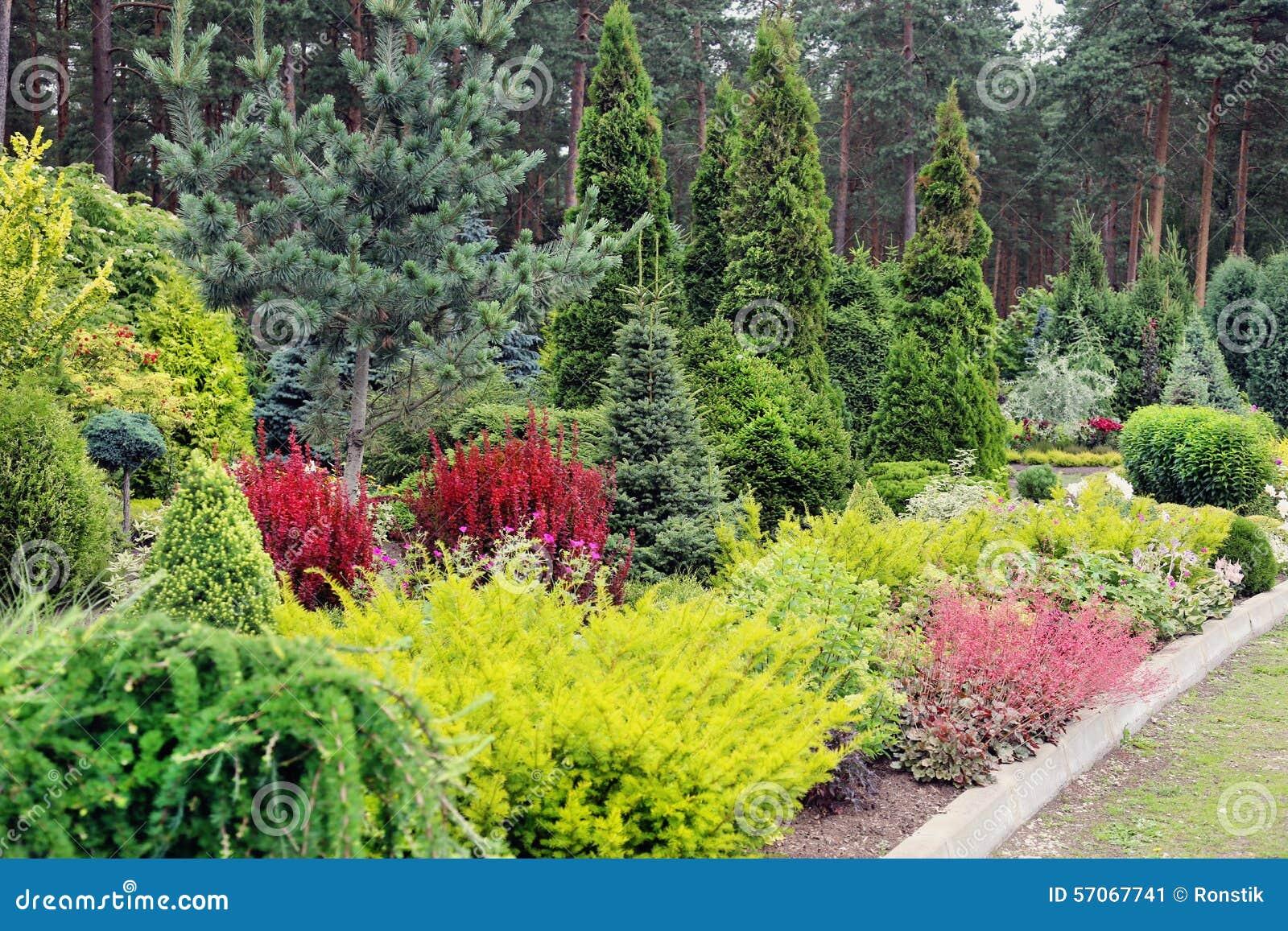 Het landschap van de tuin
