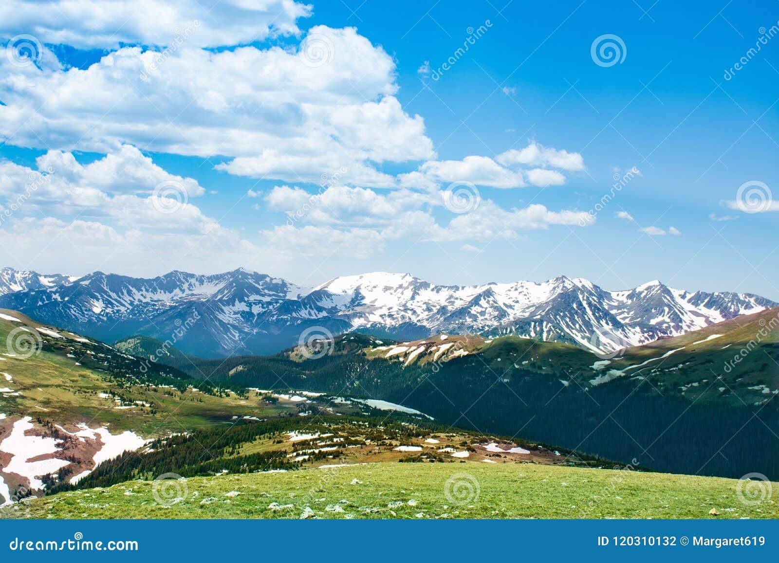 Het landschap van de vroege zomercolorado met groene weiden en sneeuw behandelde bergen