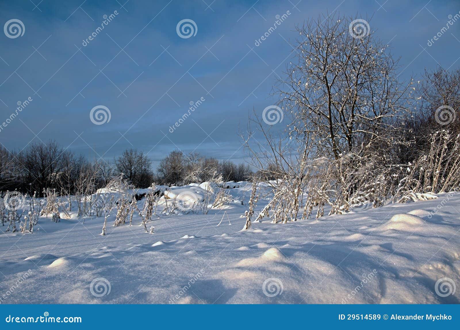 Het landschap van de winter. De scène van de winter