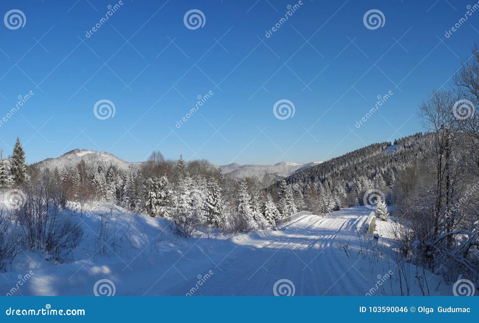 Het landschap van de winter Landweg met verse sneeuw wordt behandeld die Tysovets
