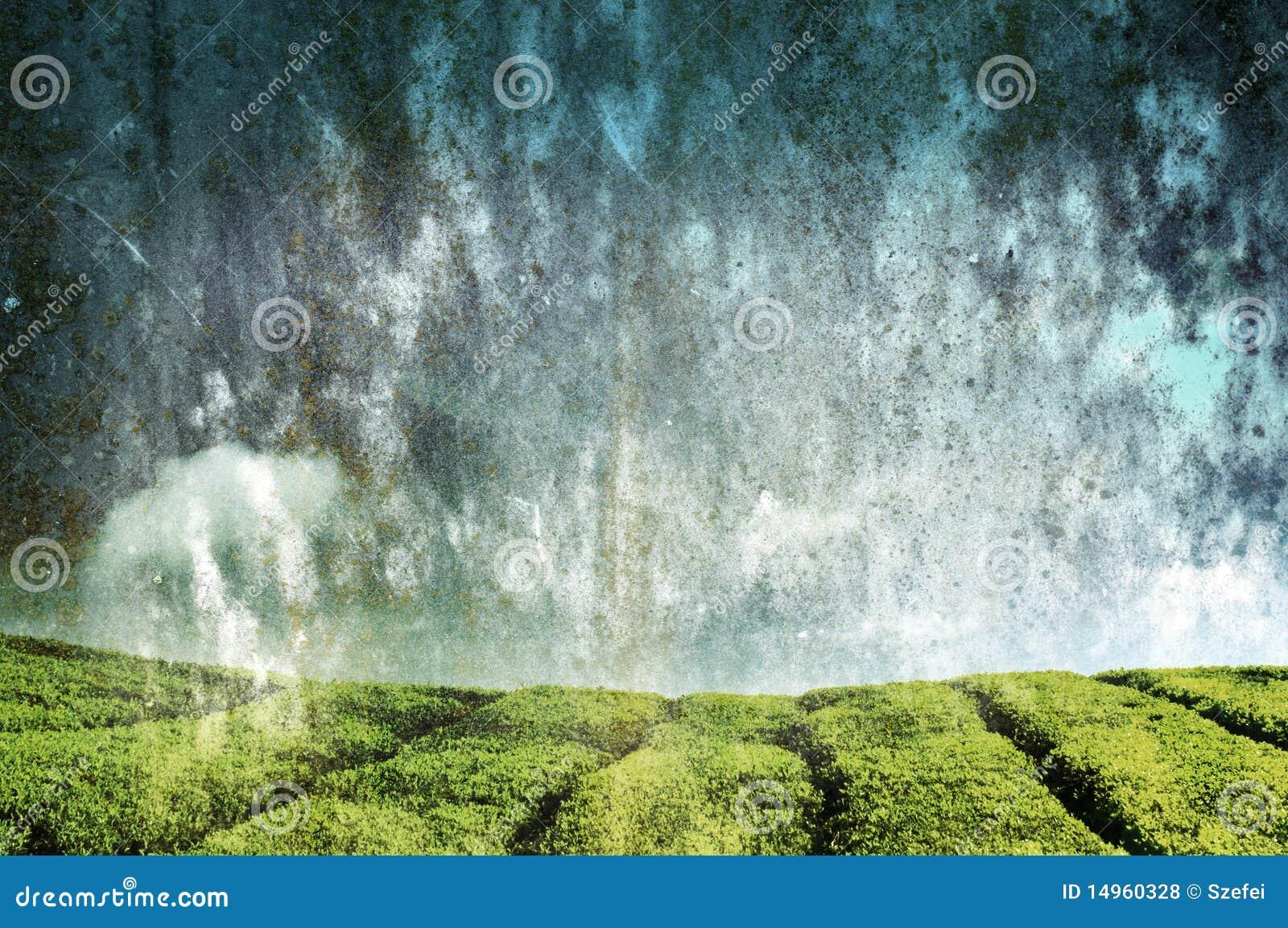 Het landschap van Grunge