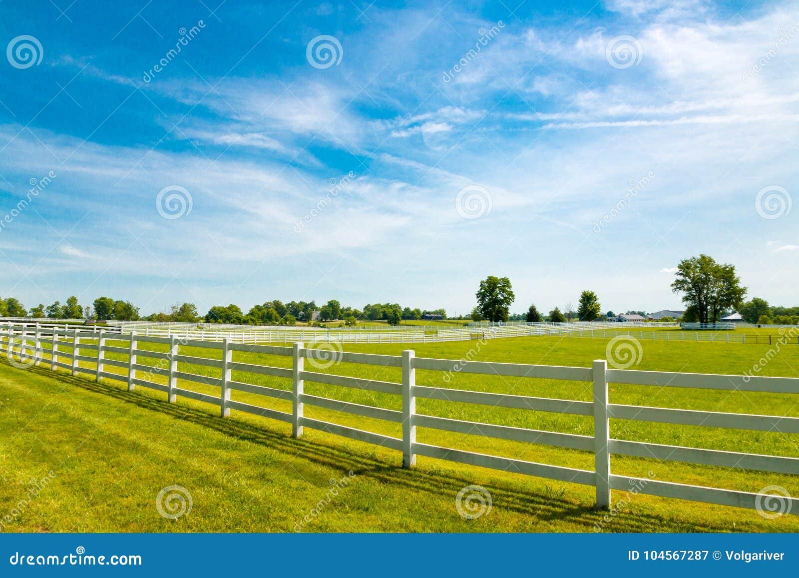 Het landschap van het land