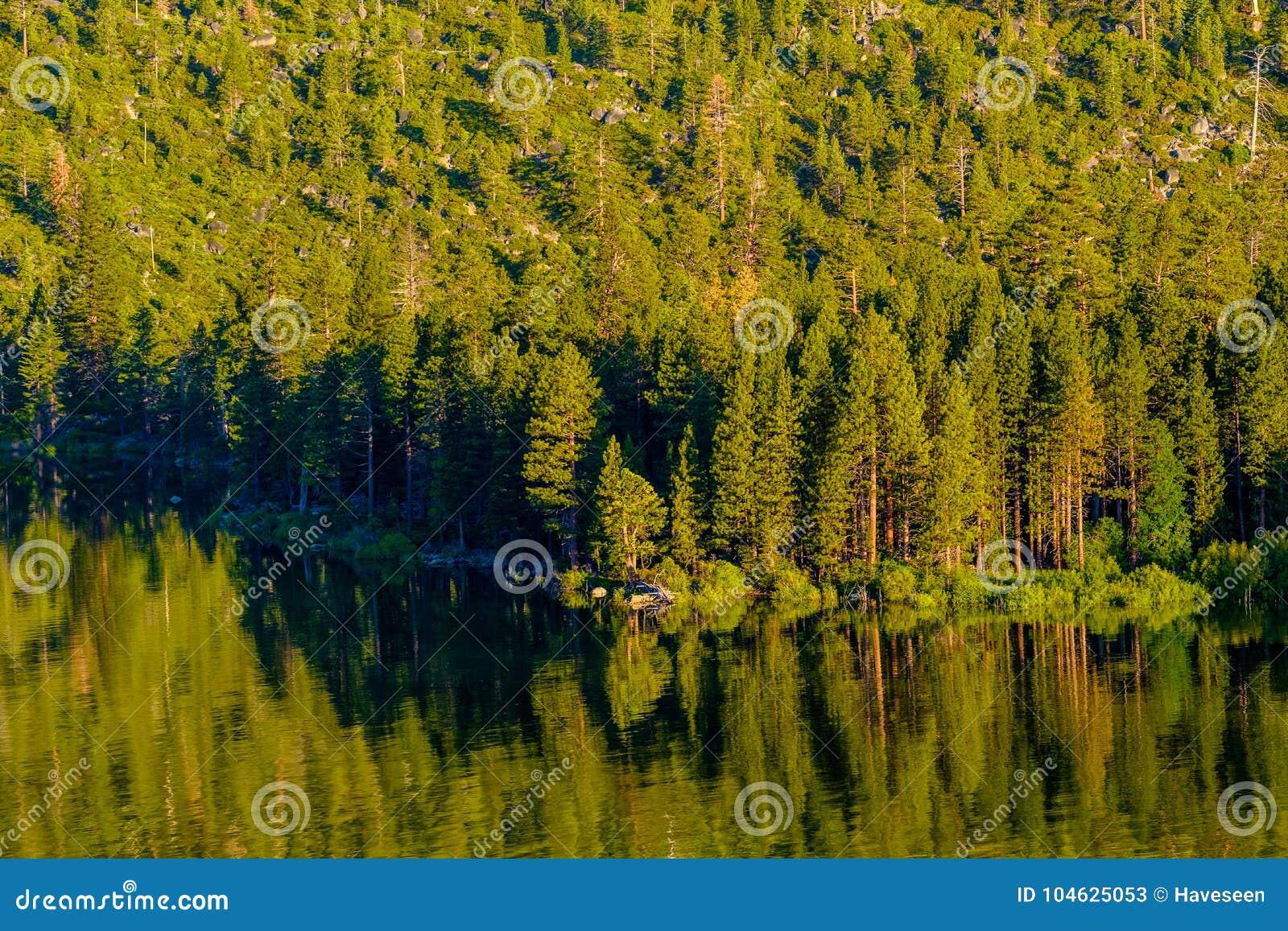 Download Het Landschap Van Meertahoe - Californië, De V.S. Stock Afbeelding - Afbeelding bestaande uit amerika, vakantie: 104625053