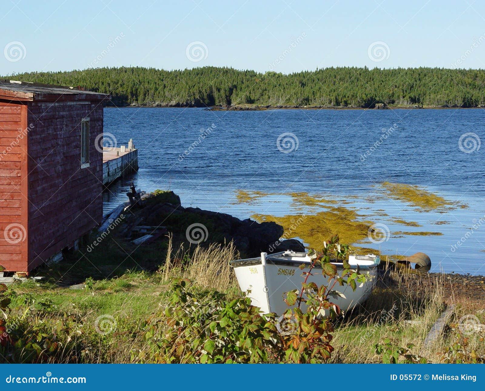 Het Landschap van Newfoundland