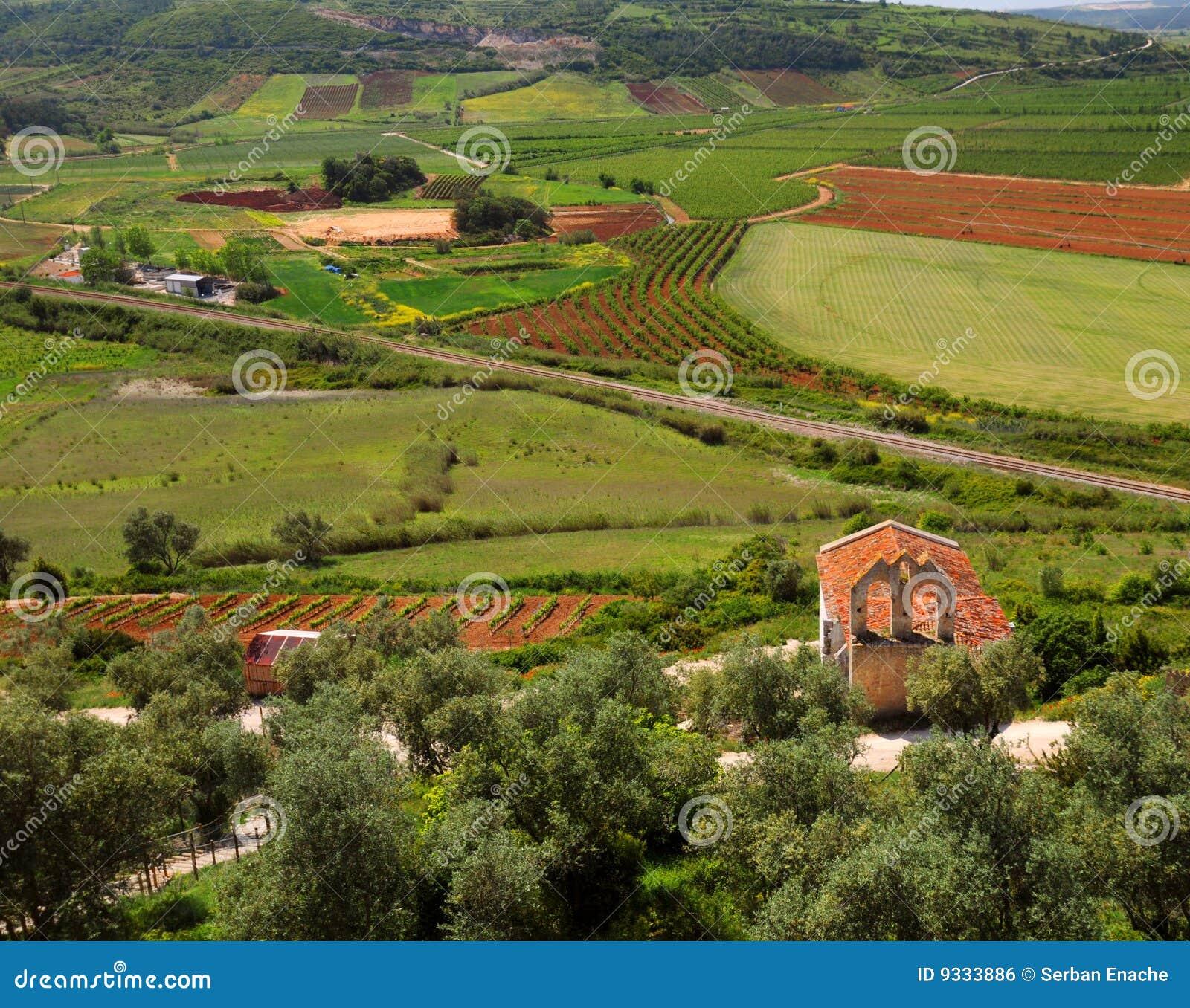 Het Landschap van Obidos