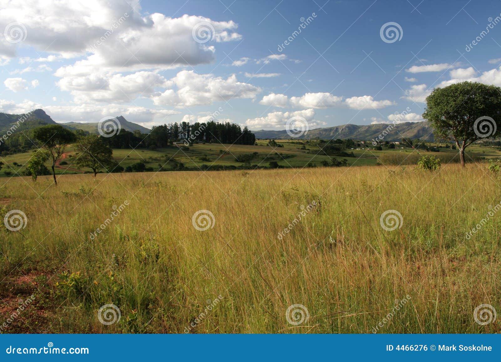 Het Landschap van Swasiland