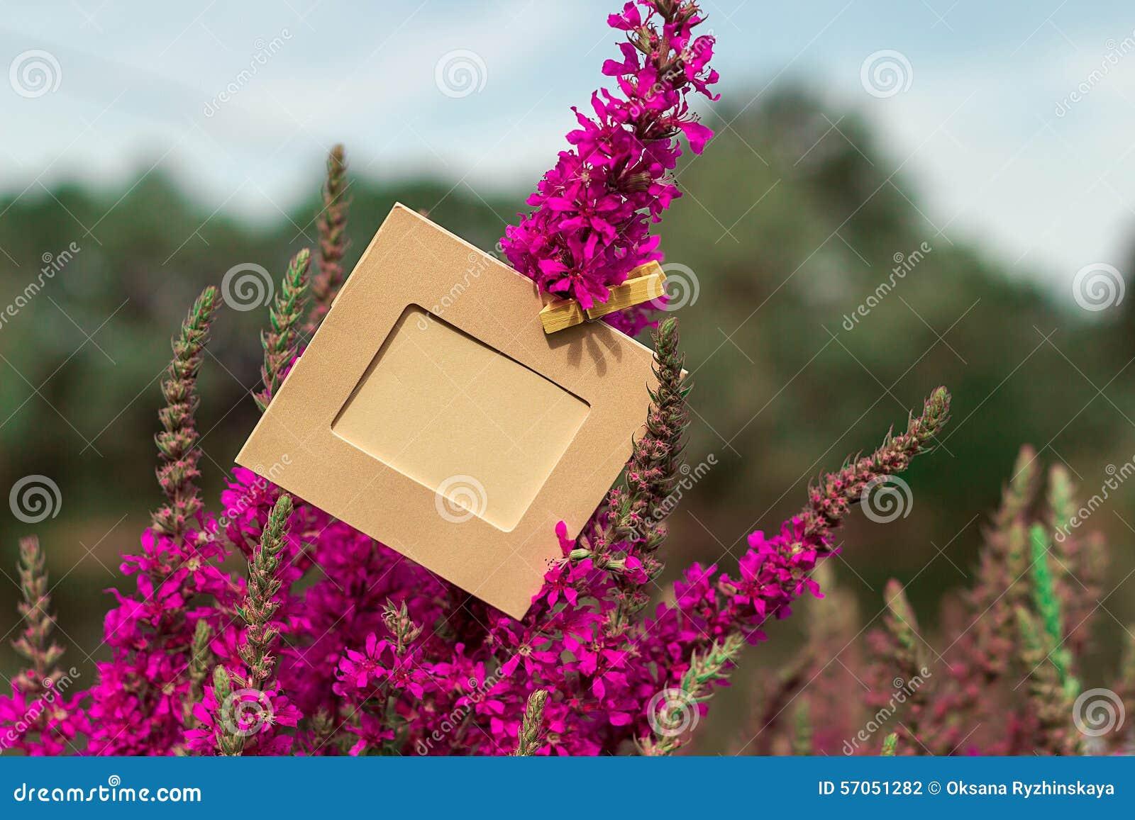 Het lege kader hangen op een purpere bloem in openlucht