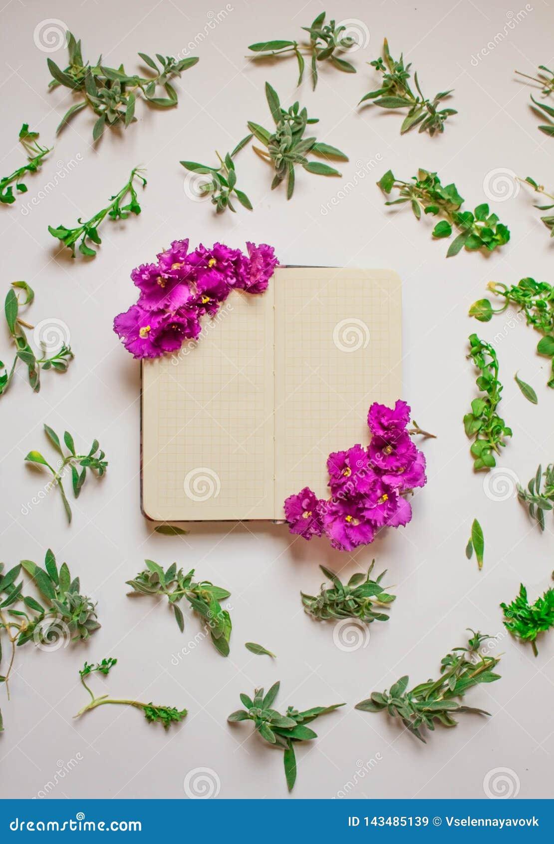 Het lege notitieboekje verfraaide purpere bloemen op een witte achtergrond, hoogste mening Blocnote met groen bladeren en viooltj