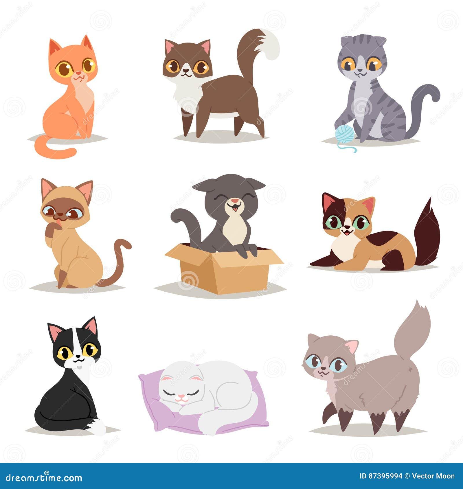 Het leuke verschillende kattenkarakter stelt vector
