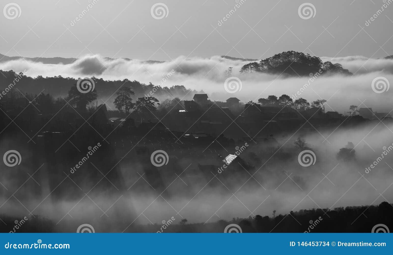 Het leven in de wolken