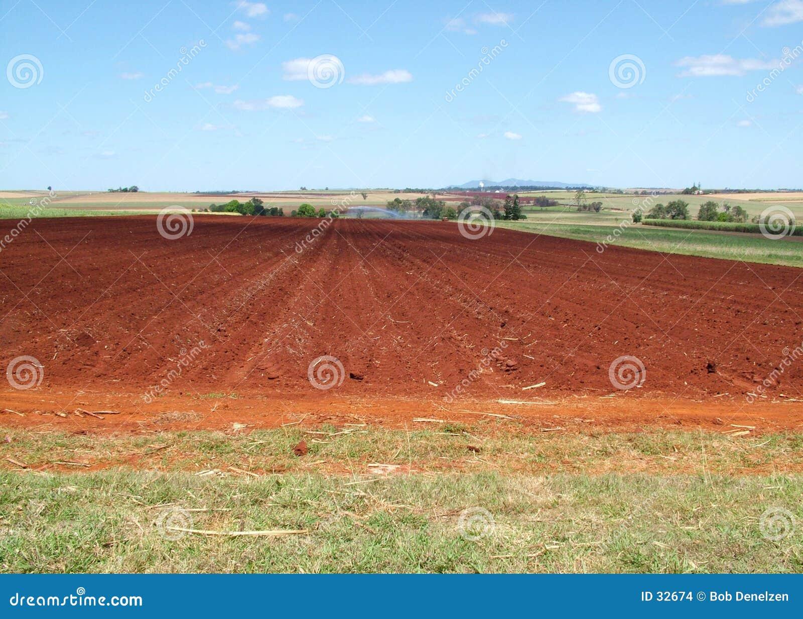 Het leven van het landbouwbedrijf