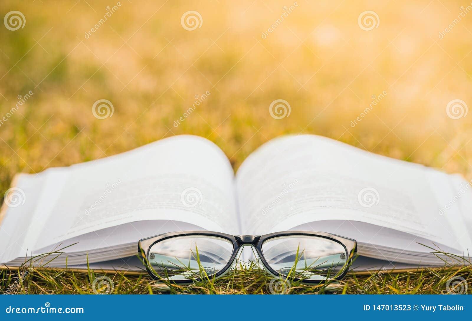 Het lezen in aard Openluchtrecreatie die een boek lezen