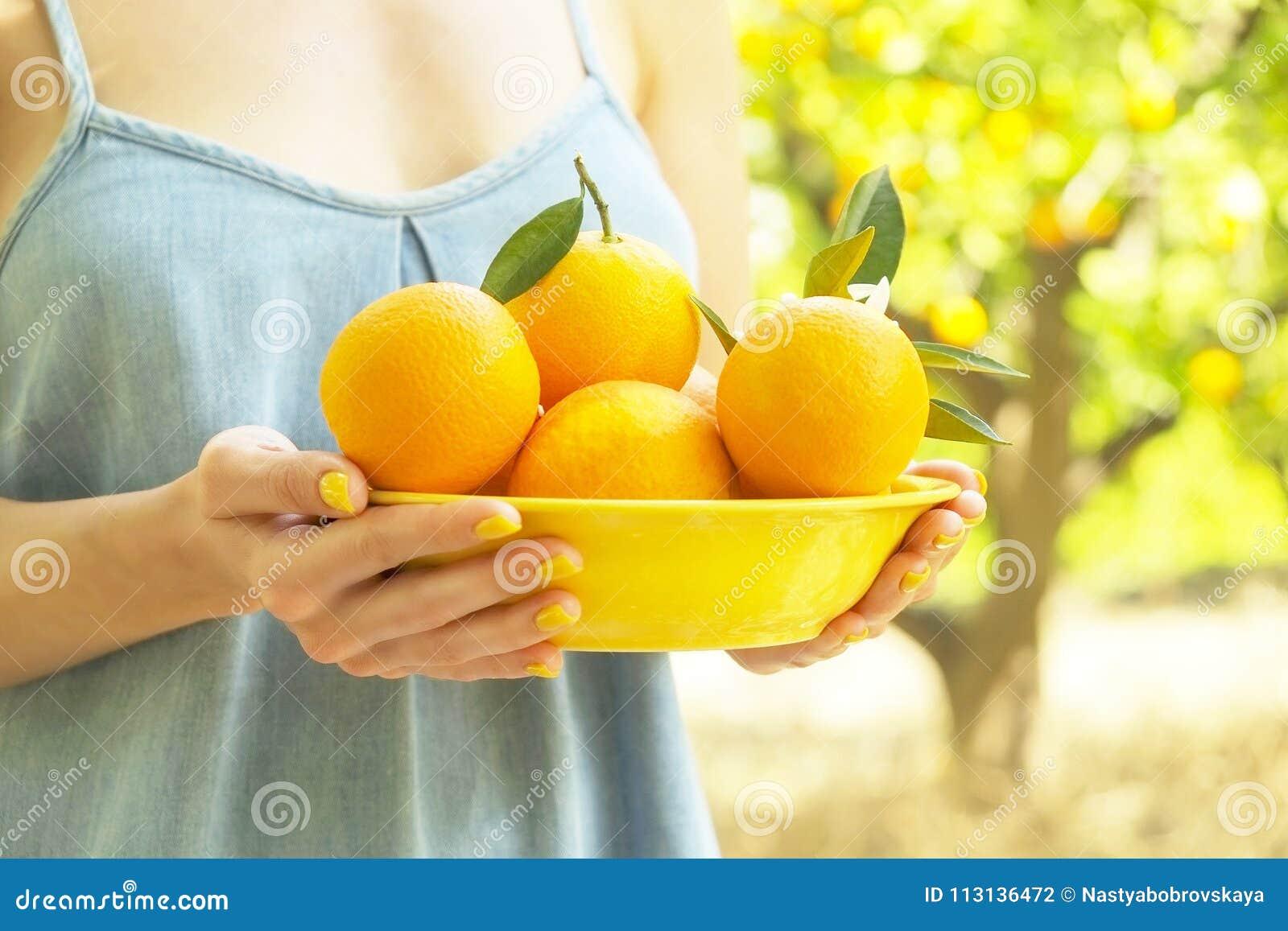 Het lokale hoogtepunt van de het landbouwbedrijftuin van de opbrengs oranje boom van zonlicht Oogsten, fruit die, vrouwelijke de