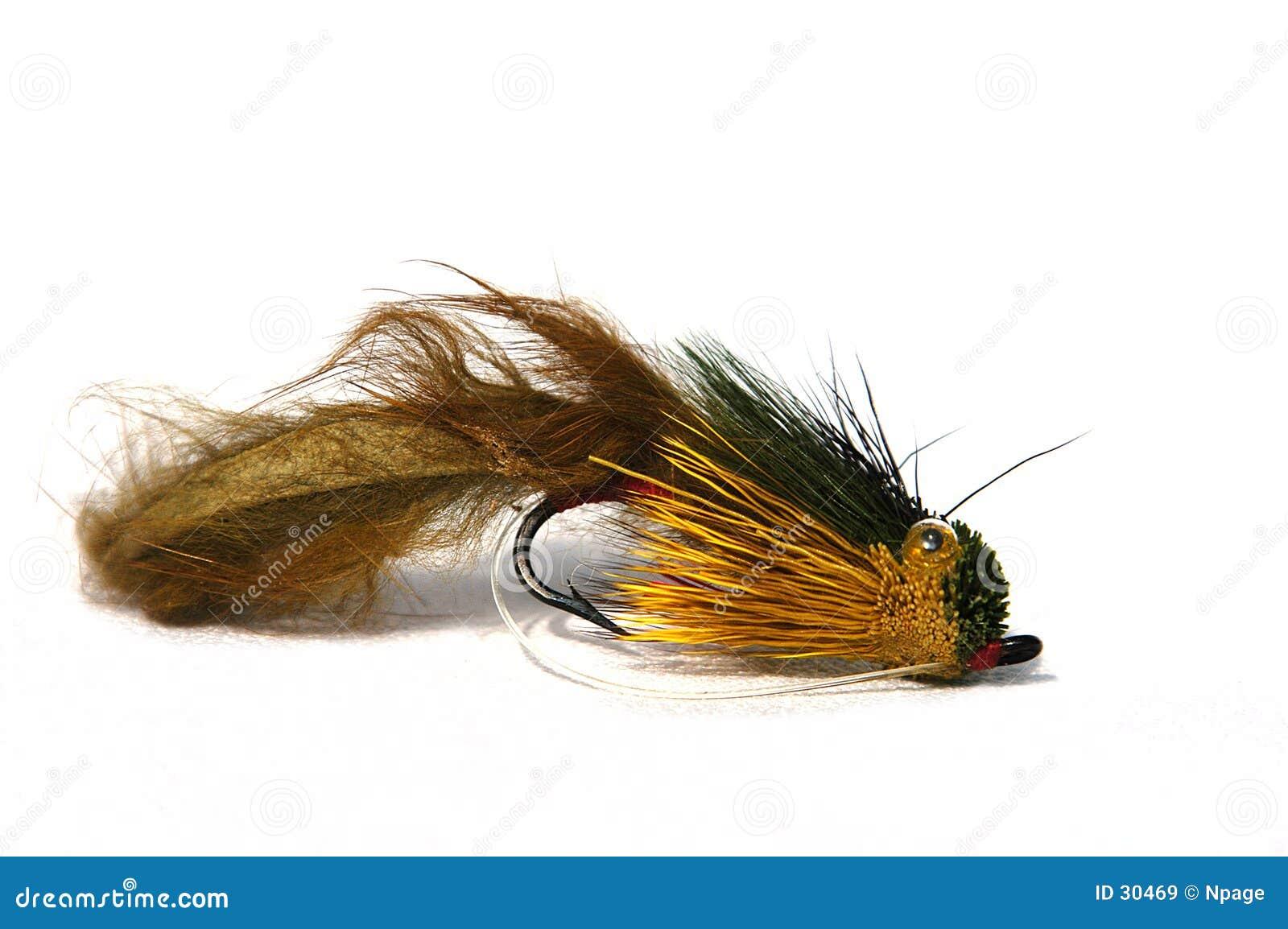 Het Lokmiddel van de visserij
