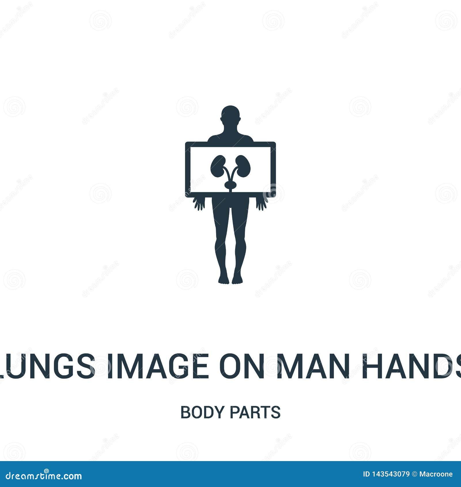 Het longenbeeld op de mens overhandigt pictogramvector van lichaamsdeleninzameling Het dunne beeld van lijnlongen op de vector va