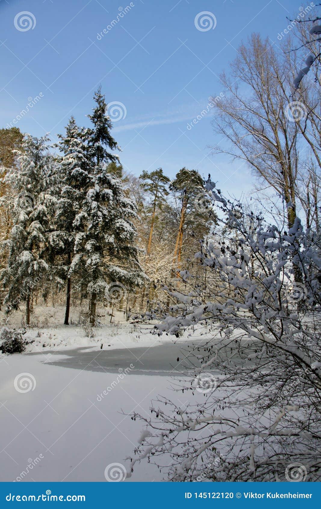 Het lopen in de winter