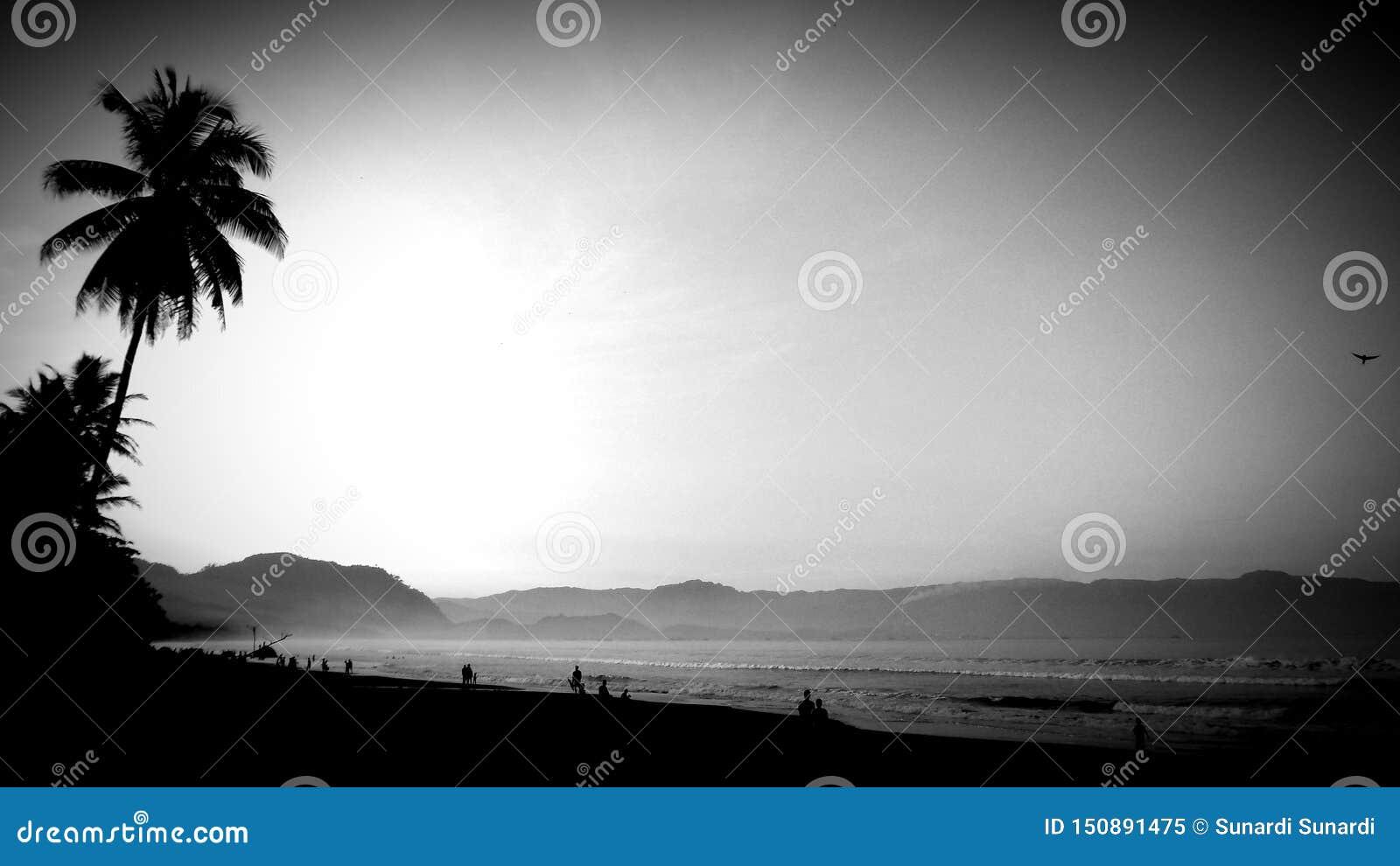 Het lopen langs het strand op de ochtendglorie