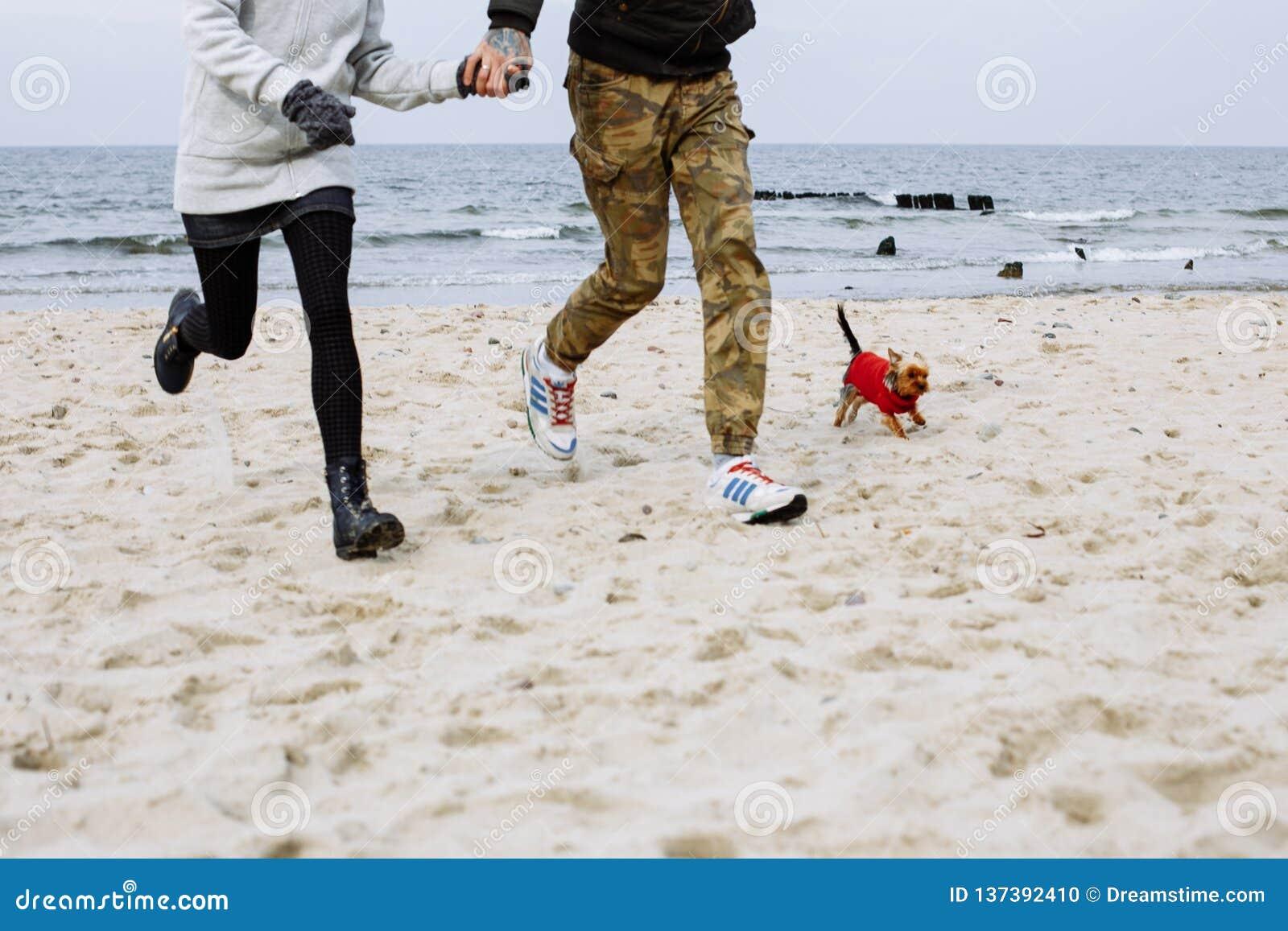 Het lopen op het strand met hond