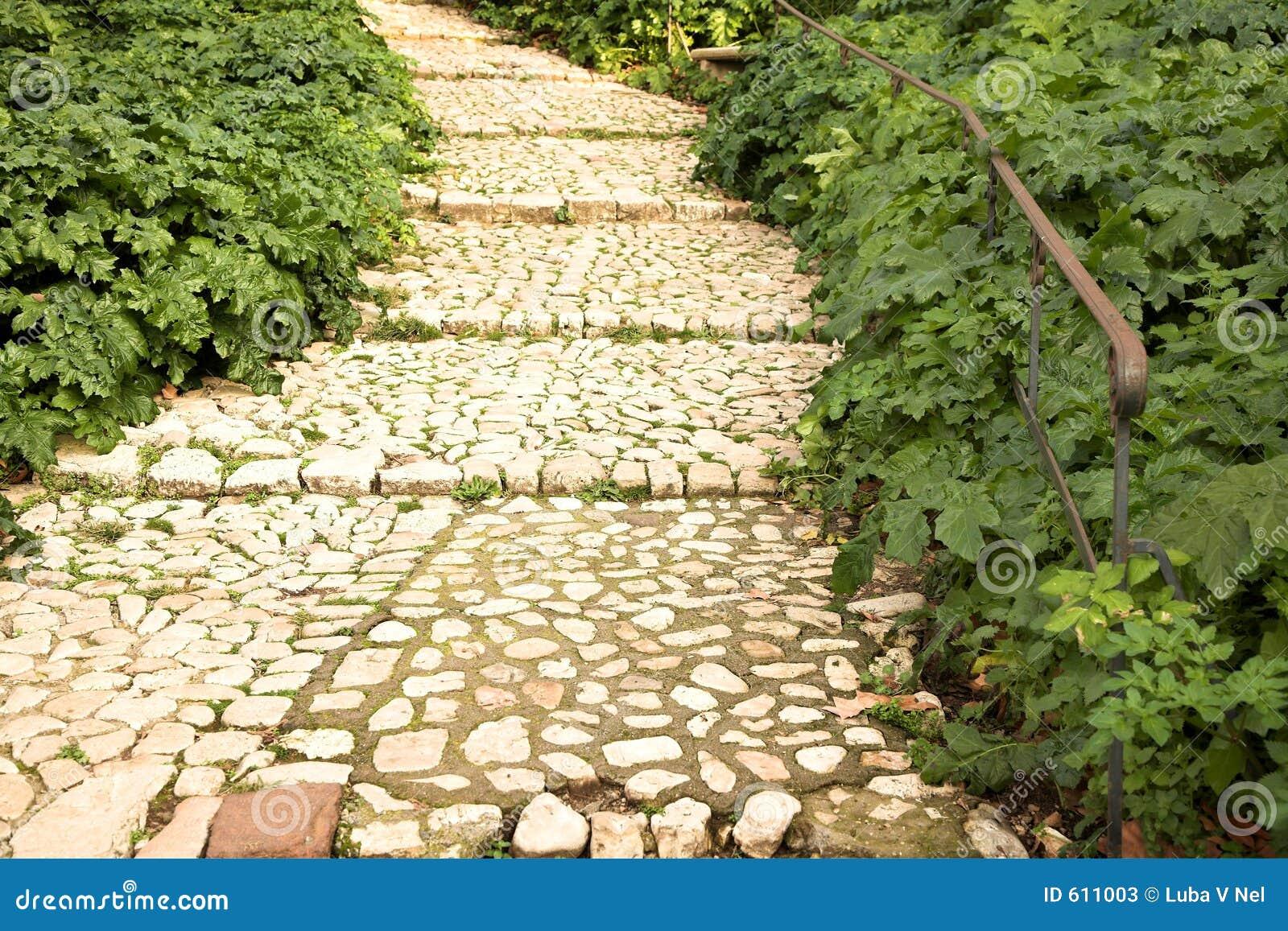 Het lopen van weg in een weelderige tuin