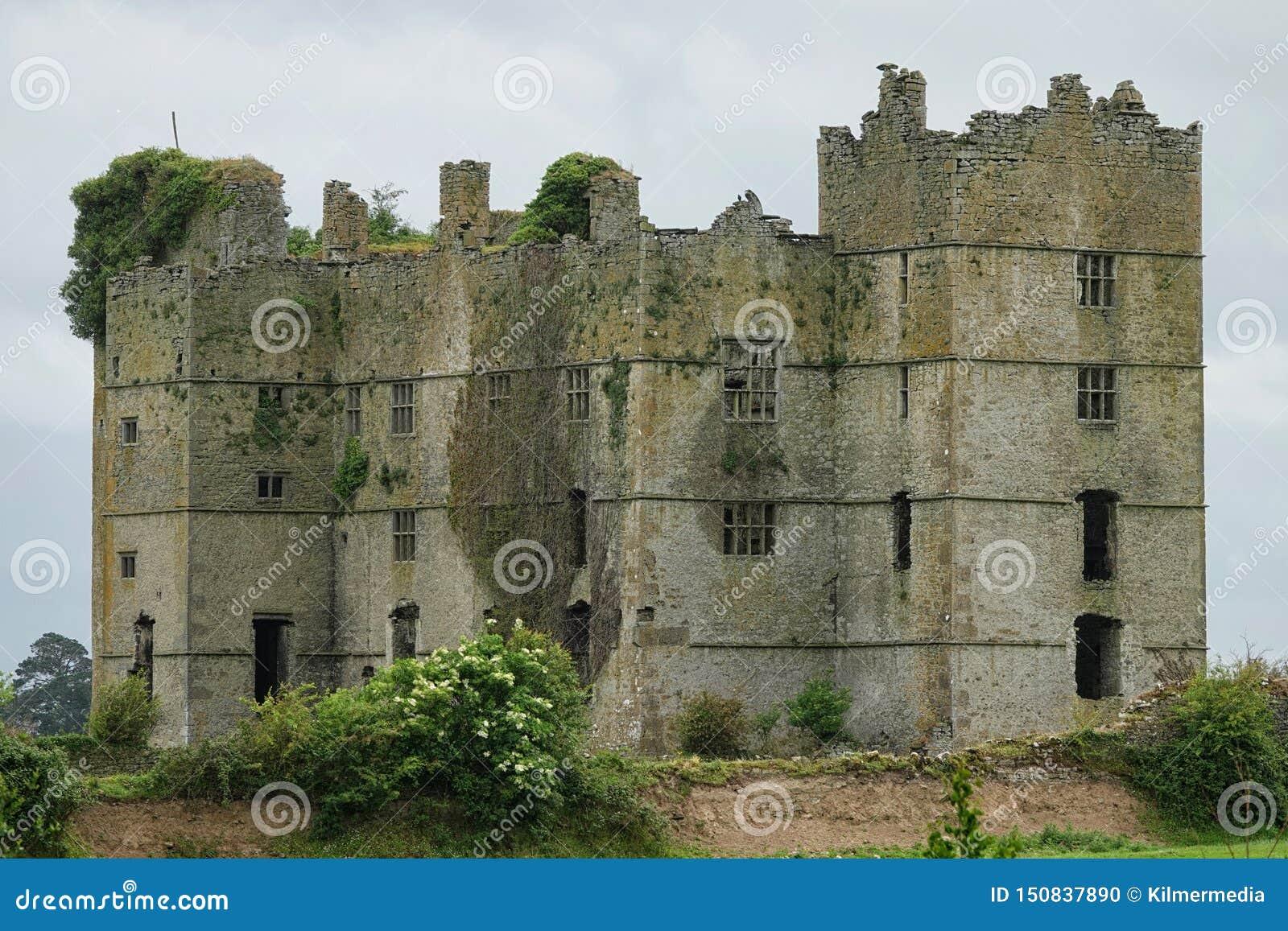 Het Loughmoekasteel ruïneert dichtbij Templemore, Ierland
