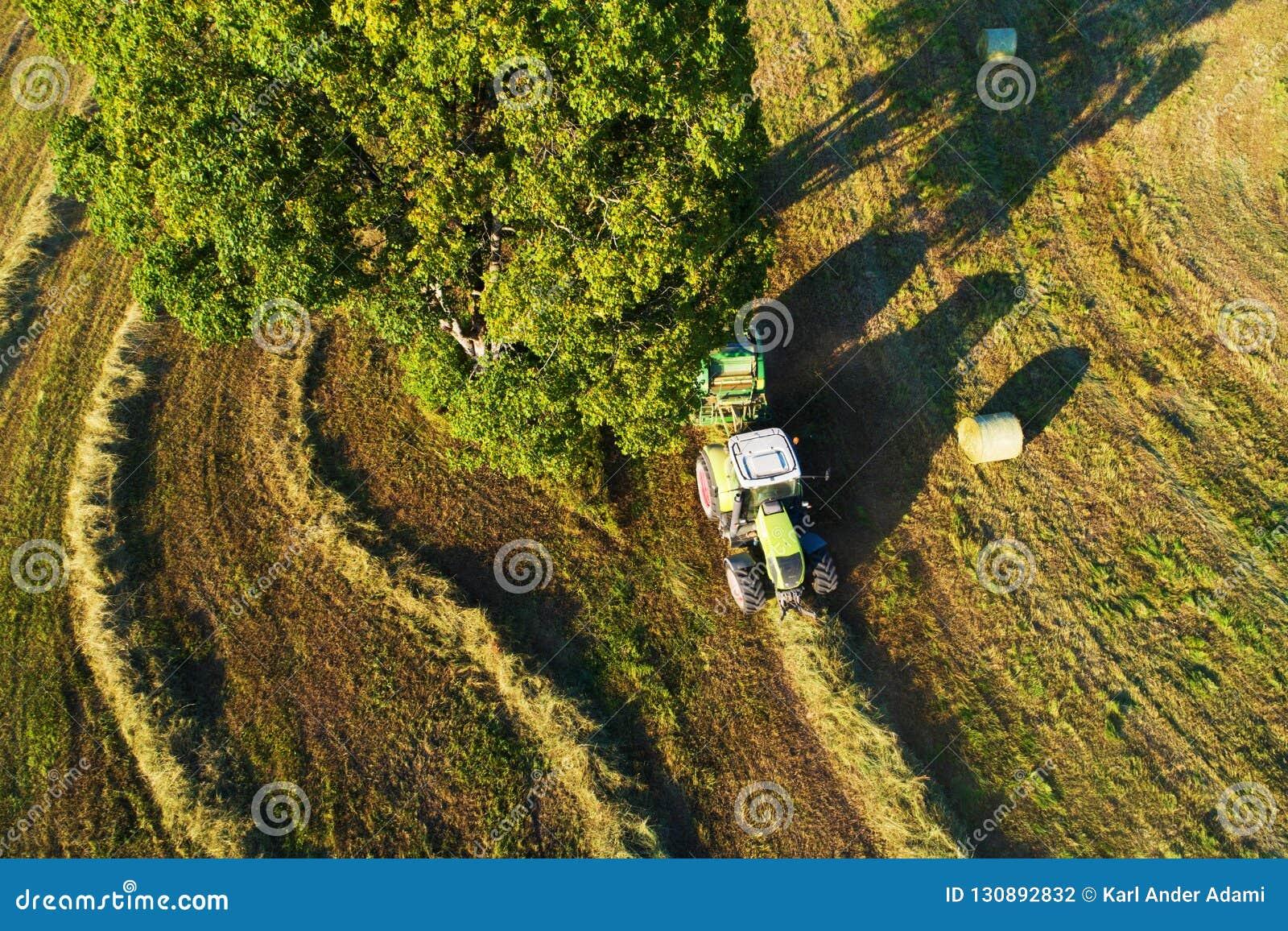 Het maken van sommige hooibroodjes in Estlands platteland