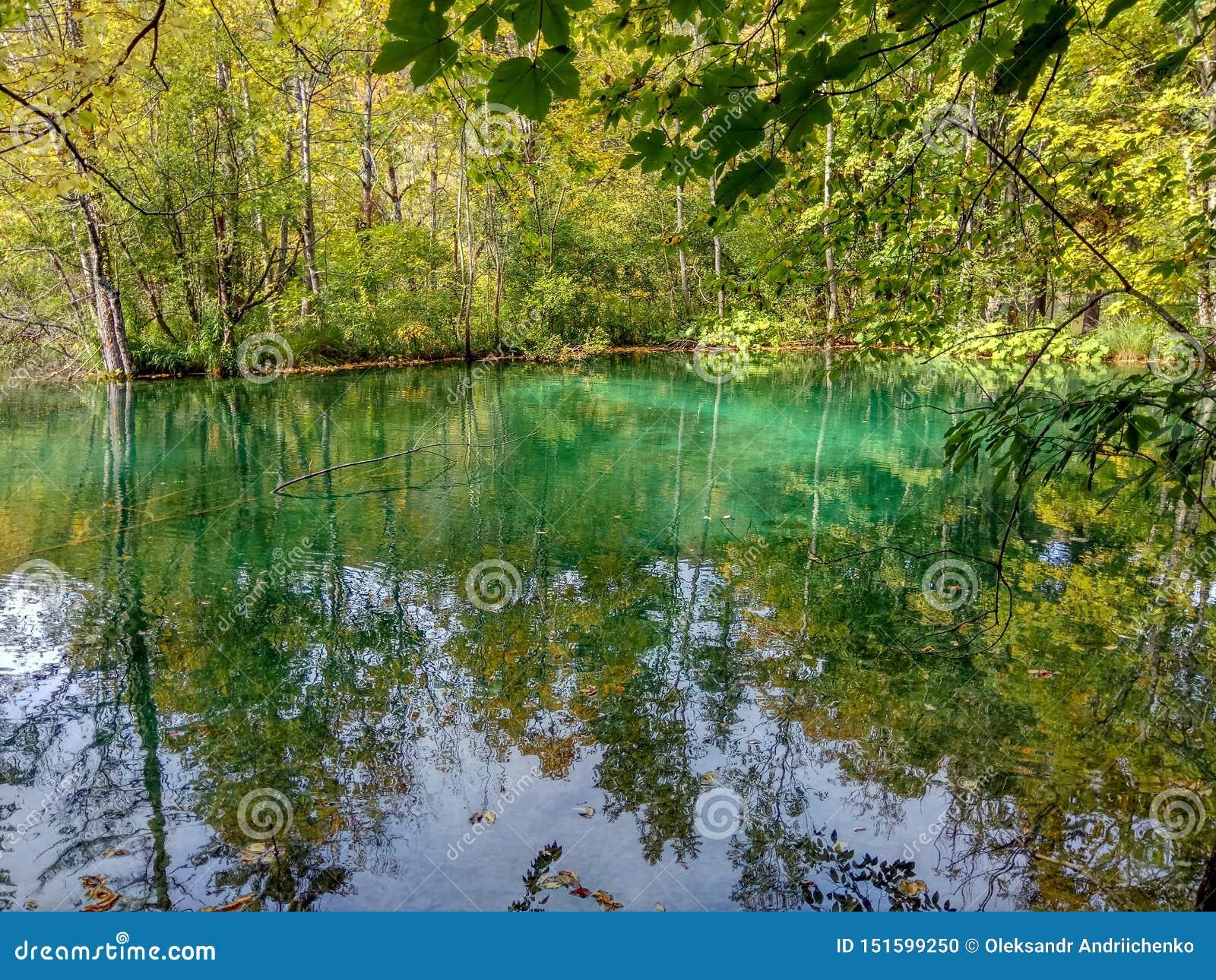 Het meer met turkoois water in de herfst bos