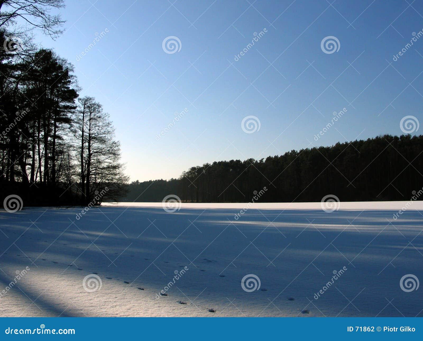 Het meer van het ijs.