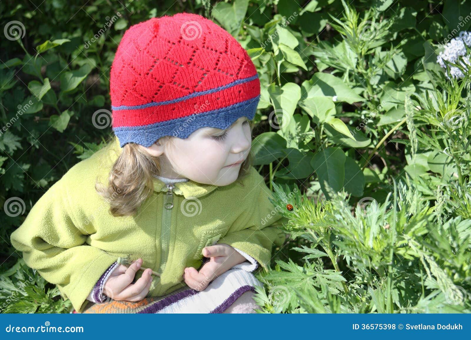 Het meisje bekijkt lieveheersbeestje op groen blad in zonnige dag