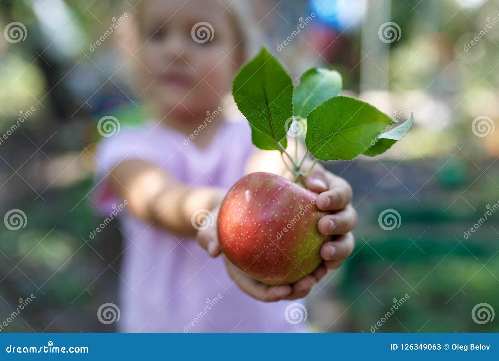 Het meisje houdt de mooie rijpe rode appel met groene bladeren