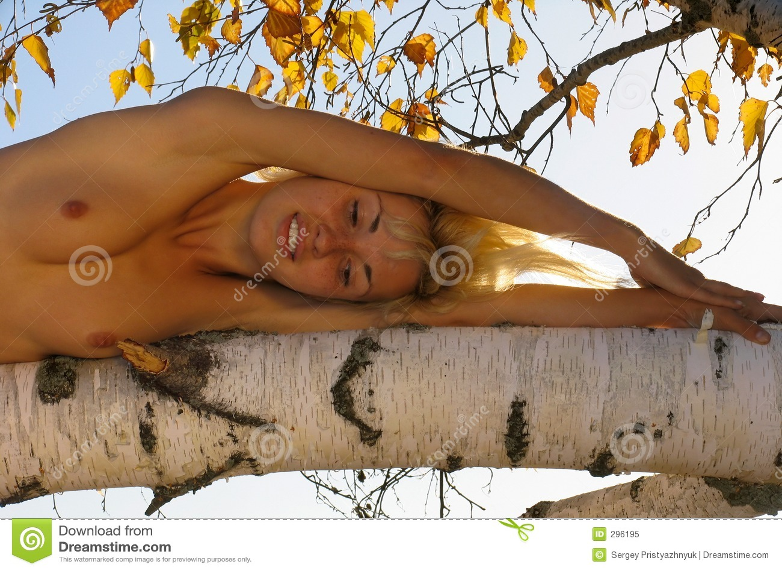 Het meisje van de blonde op de boom
