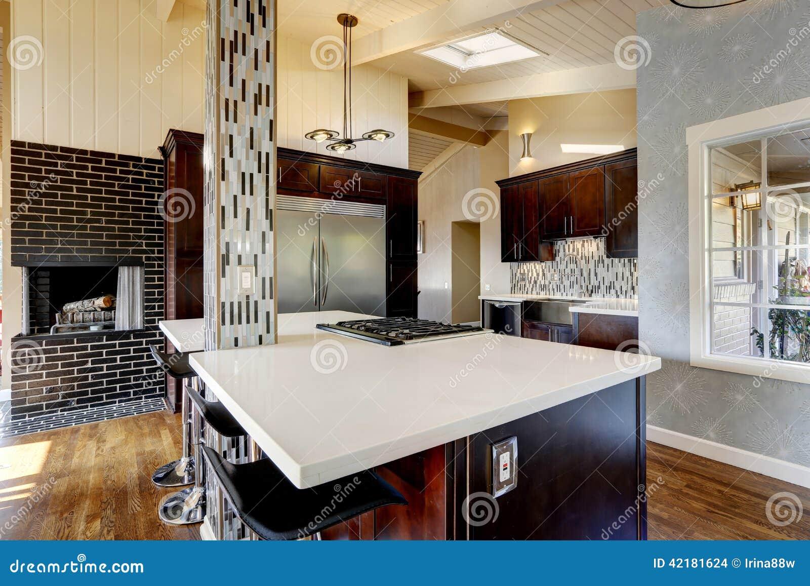 Lambris Salle De Bain Castorama : Het Moderne Binnenland Van De Keukenruimte Met Open Haard Stock Foto