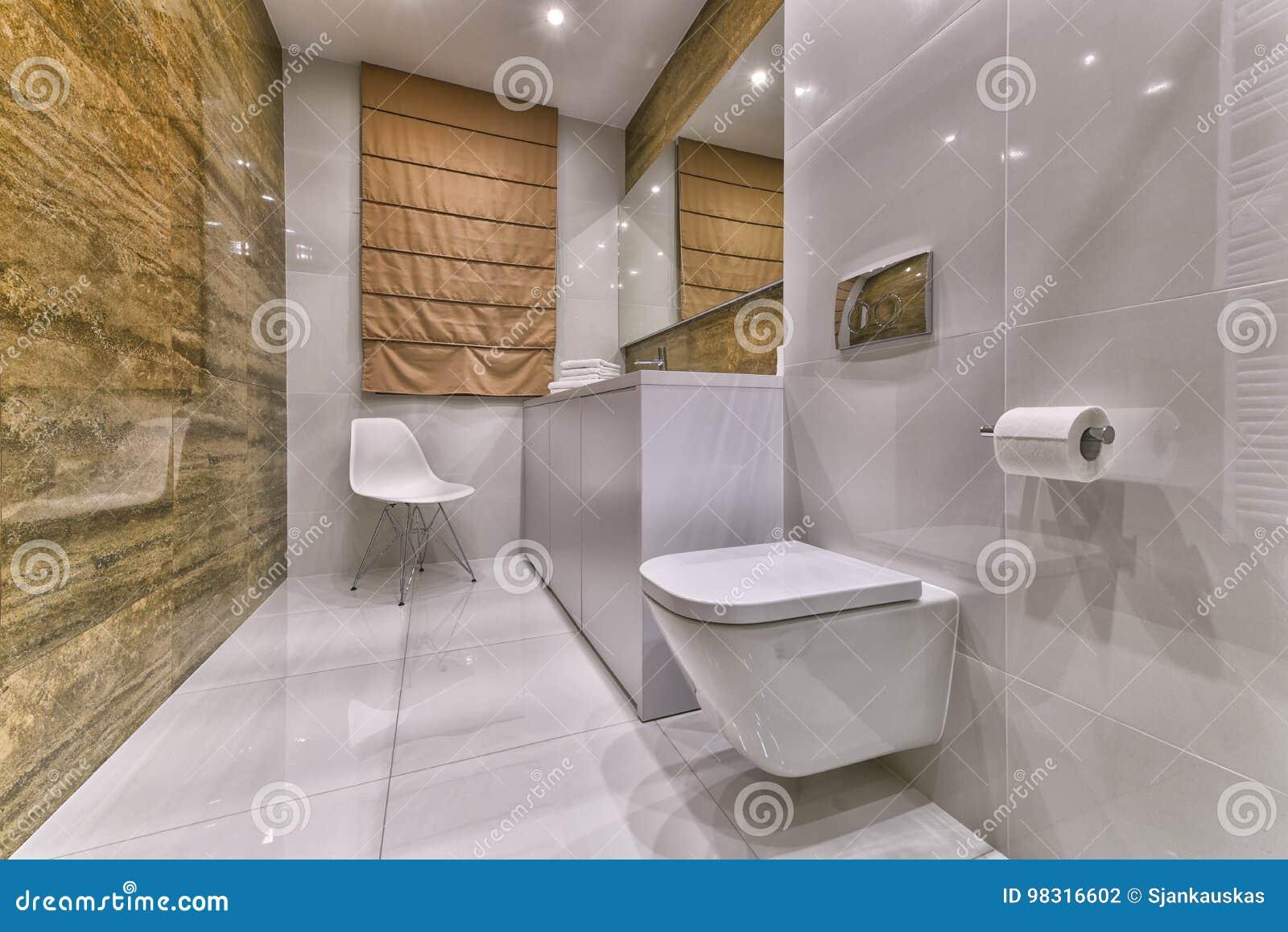 Het Moderne Ontwerp van de badkamers