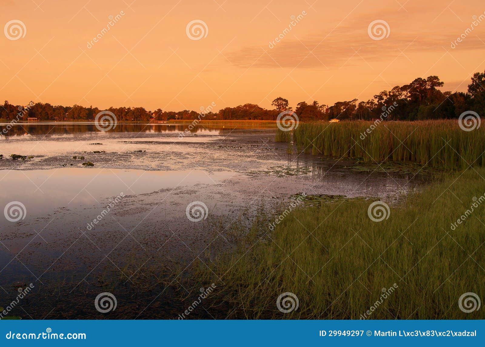 Het moeras van de zonsondergang