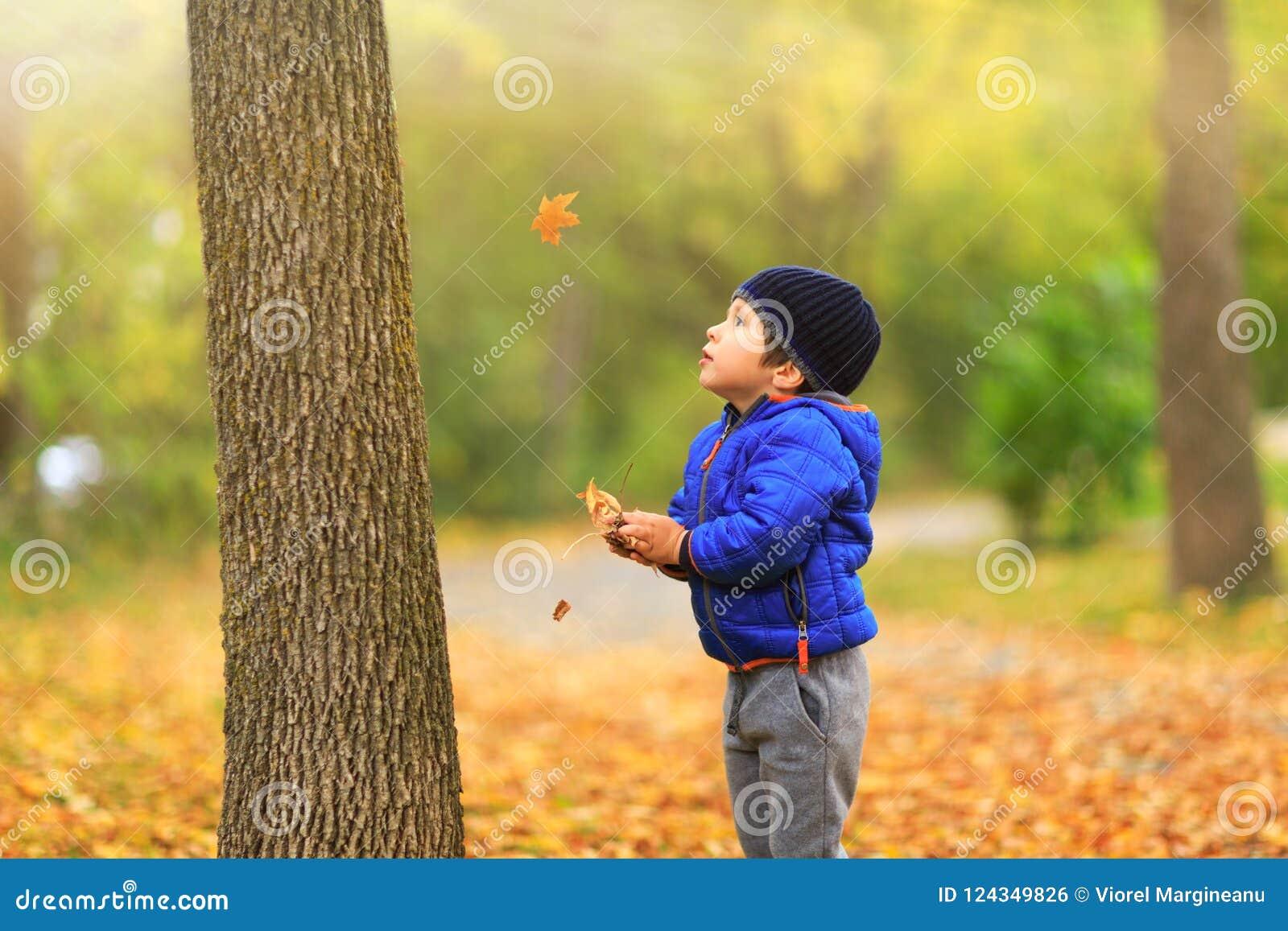 Het mooie kind vangt in de herfst de esdoornbladeren tijdens de herfst
