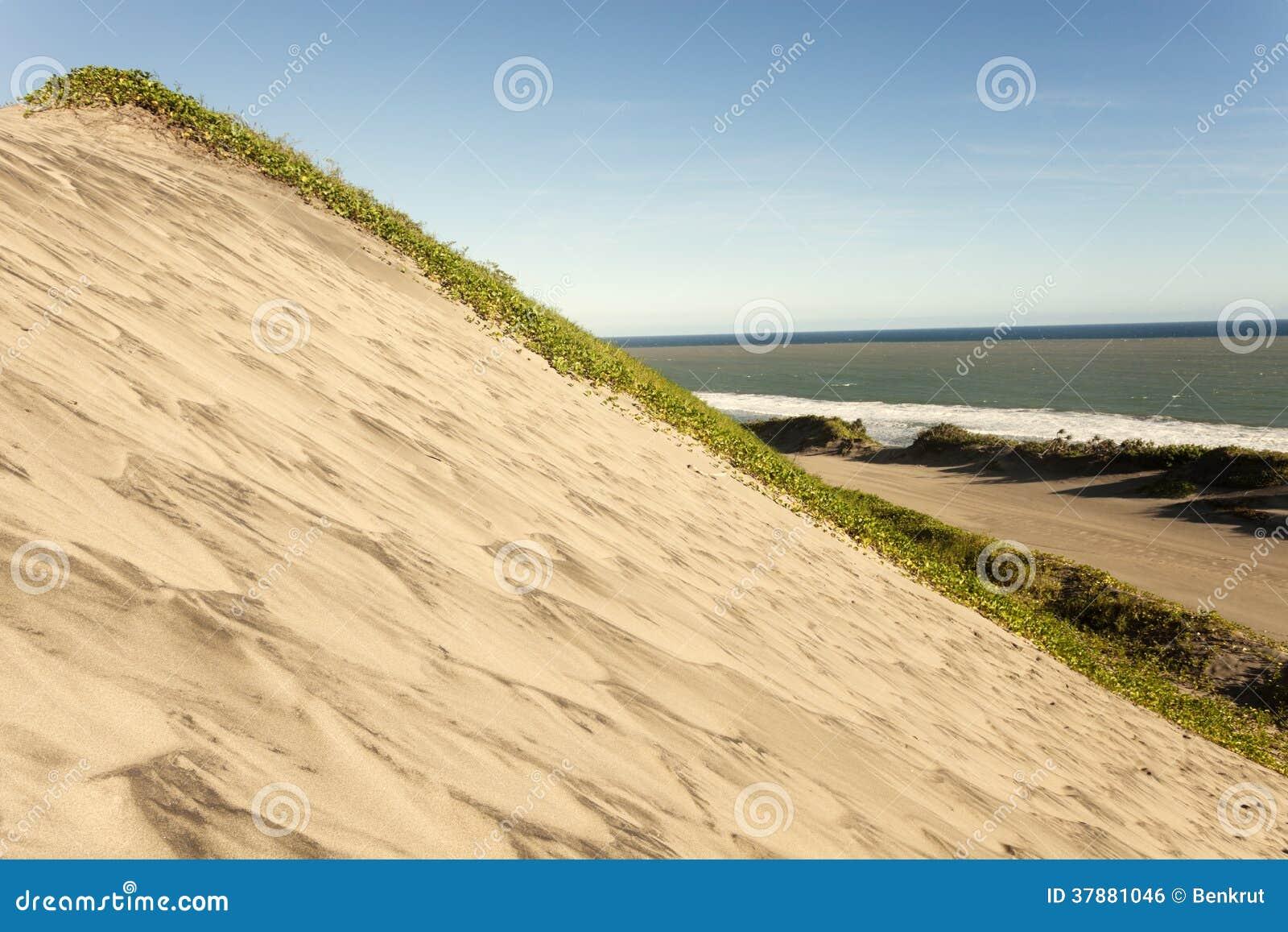 Het Nationale Park van zandduinen