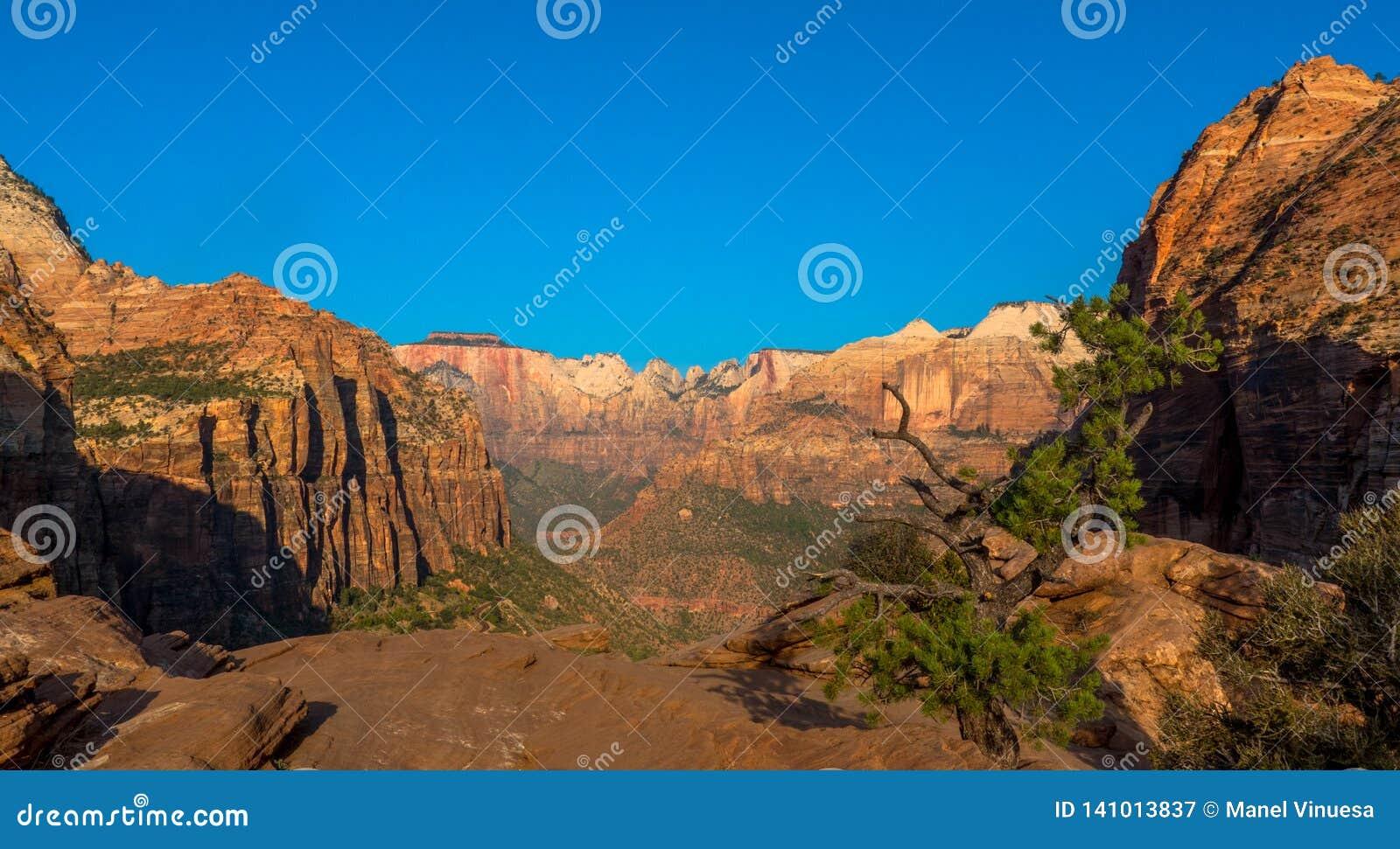 Het nationale park van Zion, UT, de V