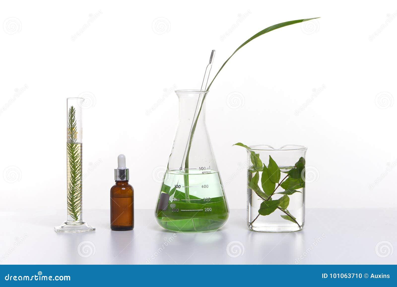 Het natuurlijke product van schoonheidsschoonheidsmiddelen met kruideningrediënten, close-up