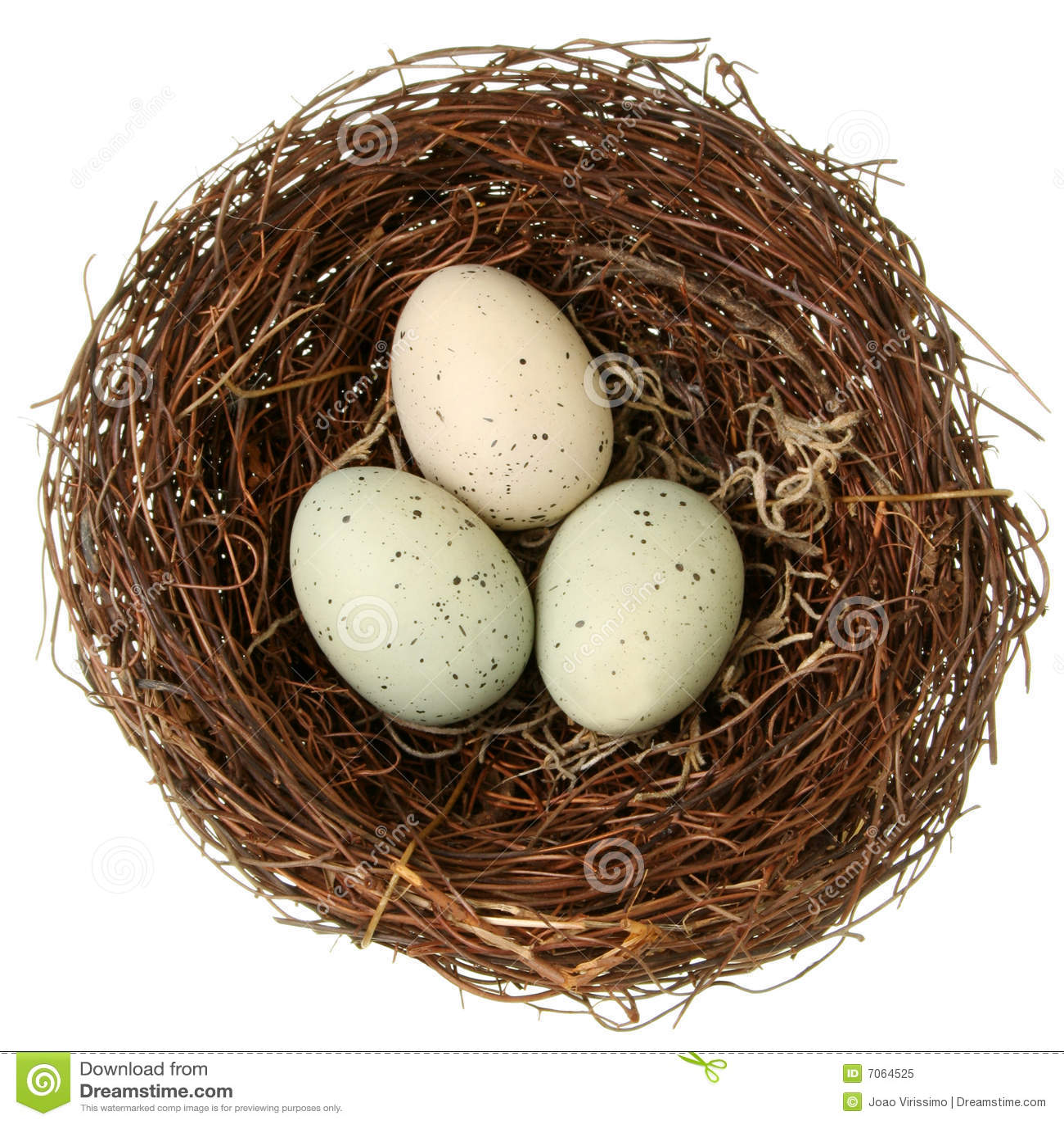 het nest van de vogel stock afbeelding afbeelding bestaande uit geboorte 7064525. Black Bedroom Furniture Sets. Home Design Ideas