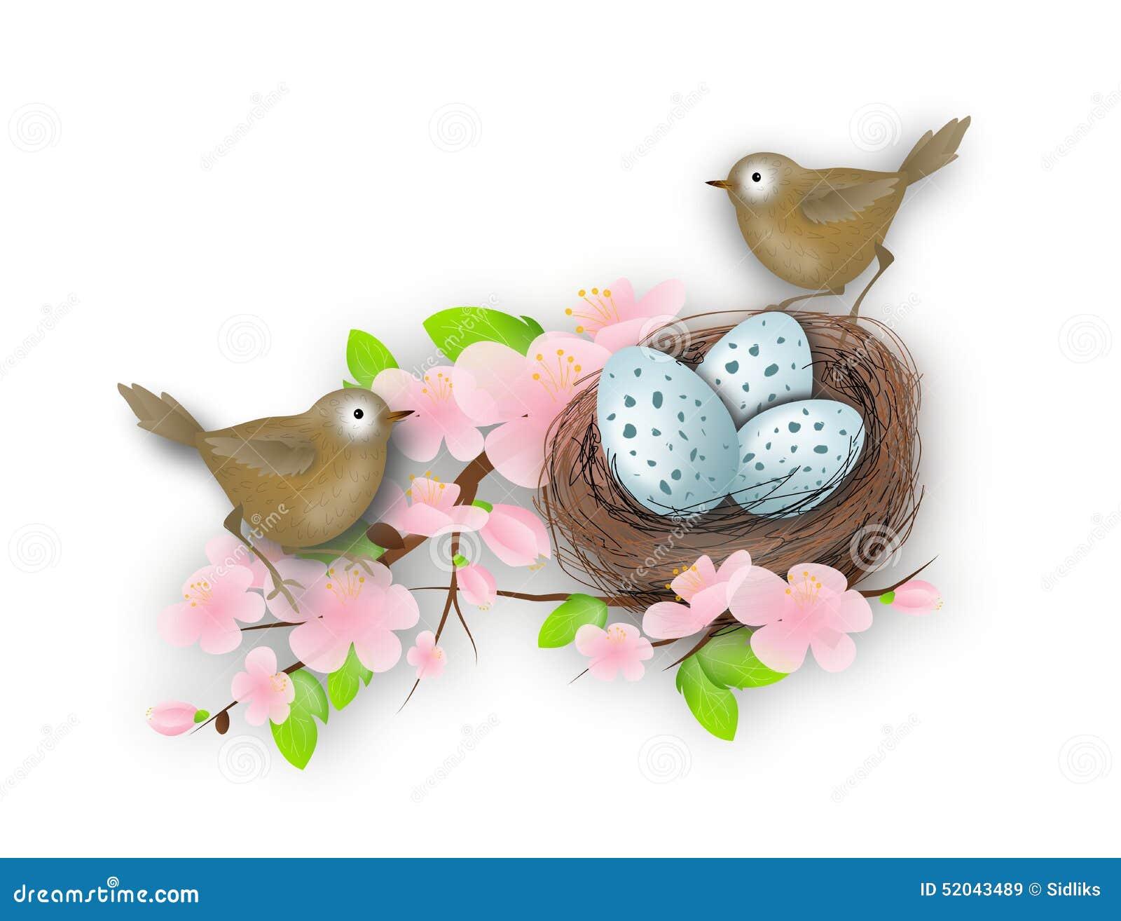 Het nest van de vogel met twee vogels