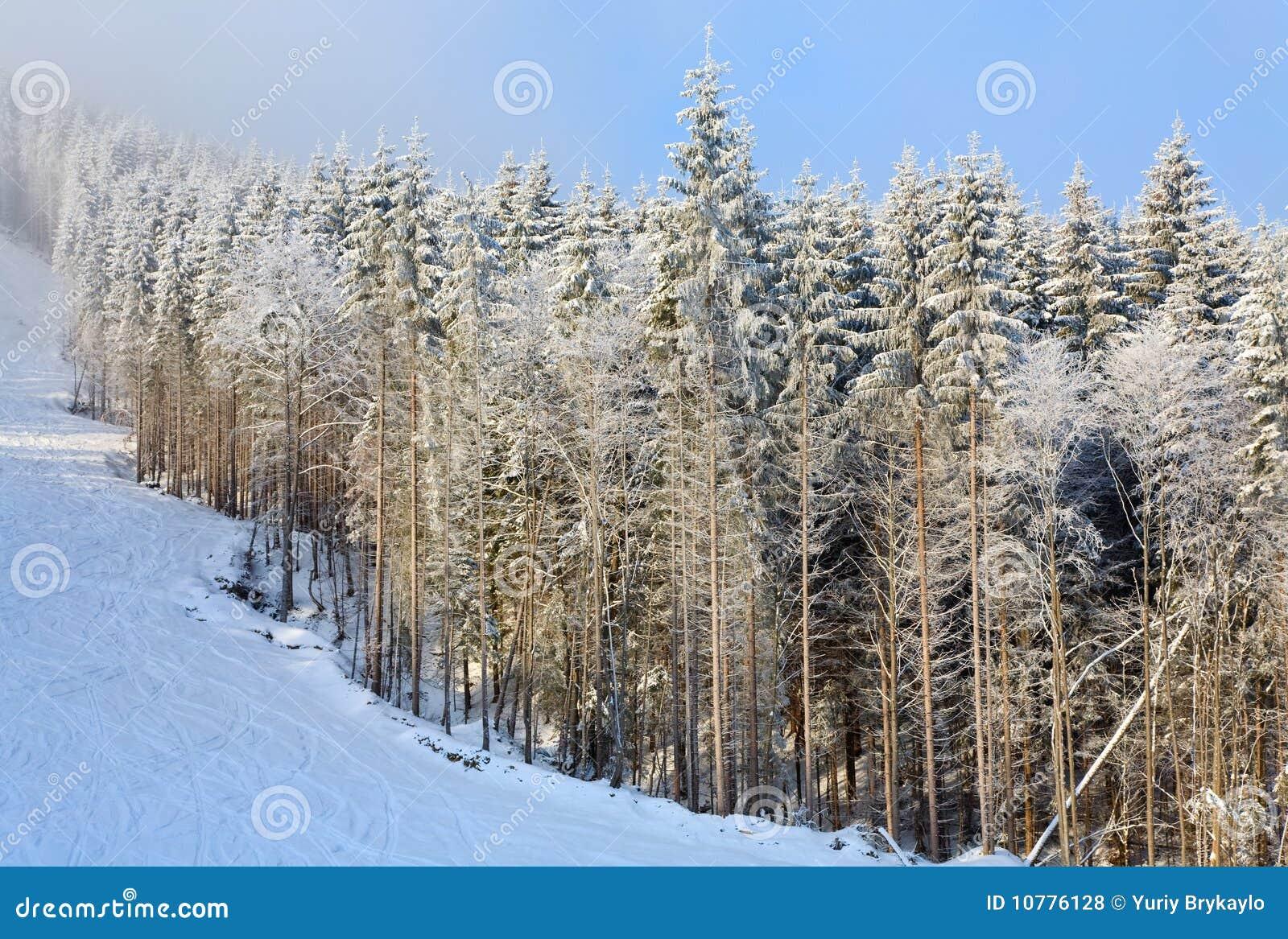 Het nevelige landschap van de de winterberg