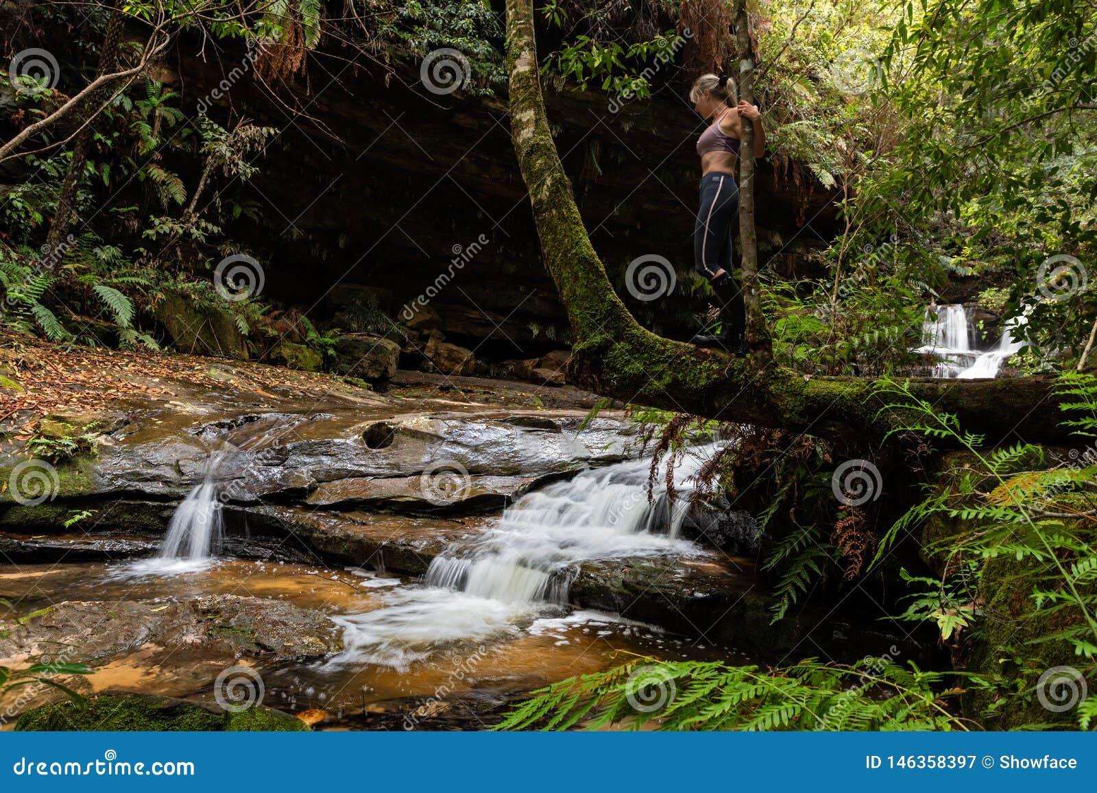 Het onderzoeken van watervallen in weelderige wildernis