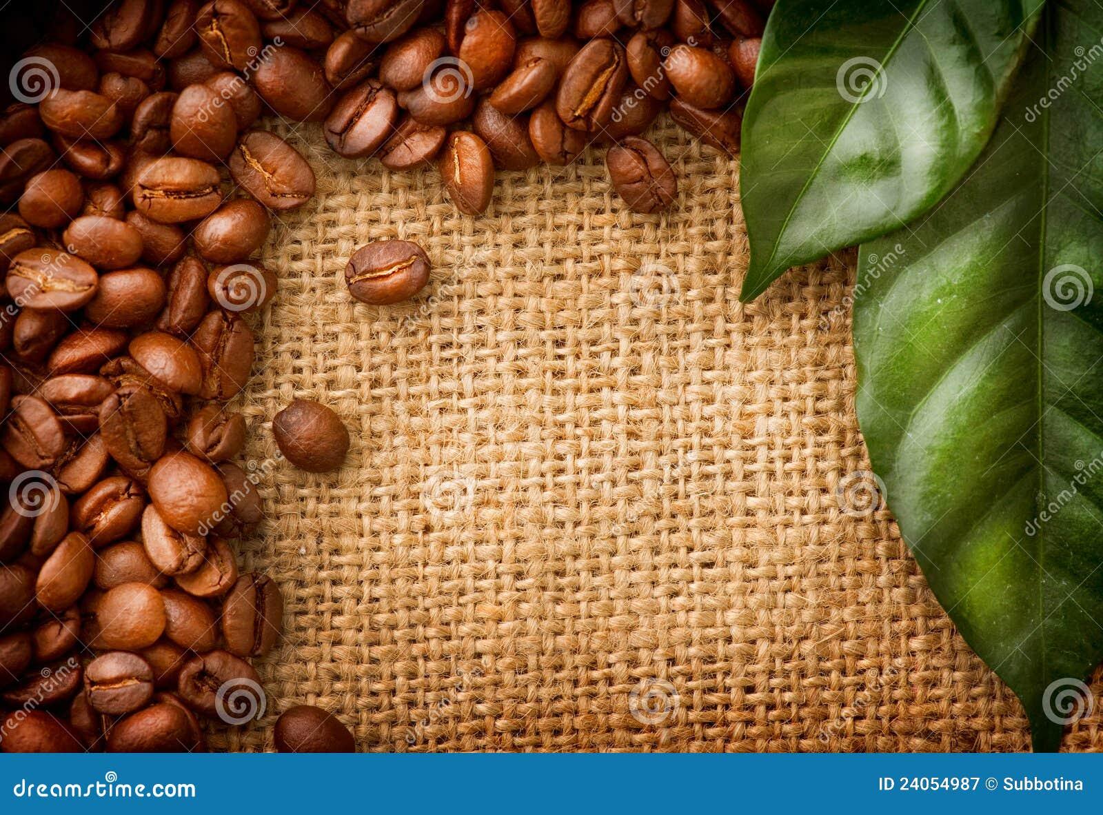 Het ontwerp van de Grens van de koffie