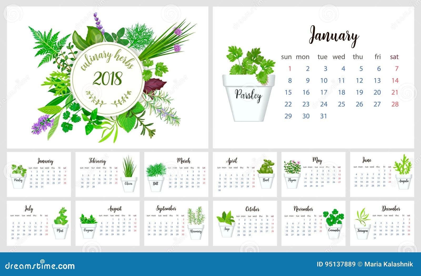 2018 het Ontwerp van de Kalenderontwerper Culinaire kruiden