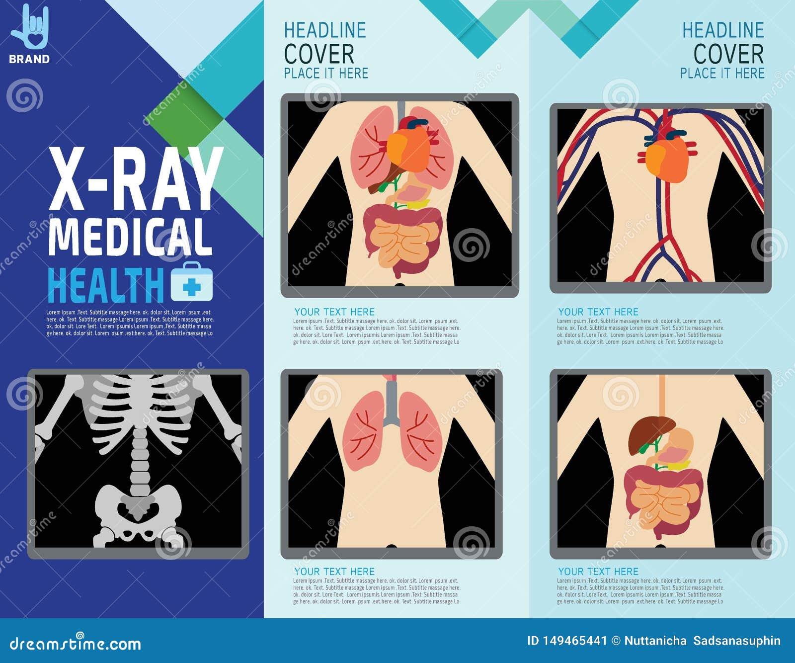Het ontwerpillustratie van het gezondheids medische vector infographic element