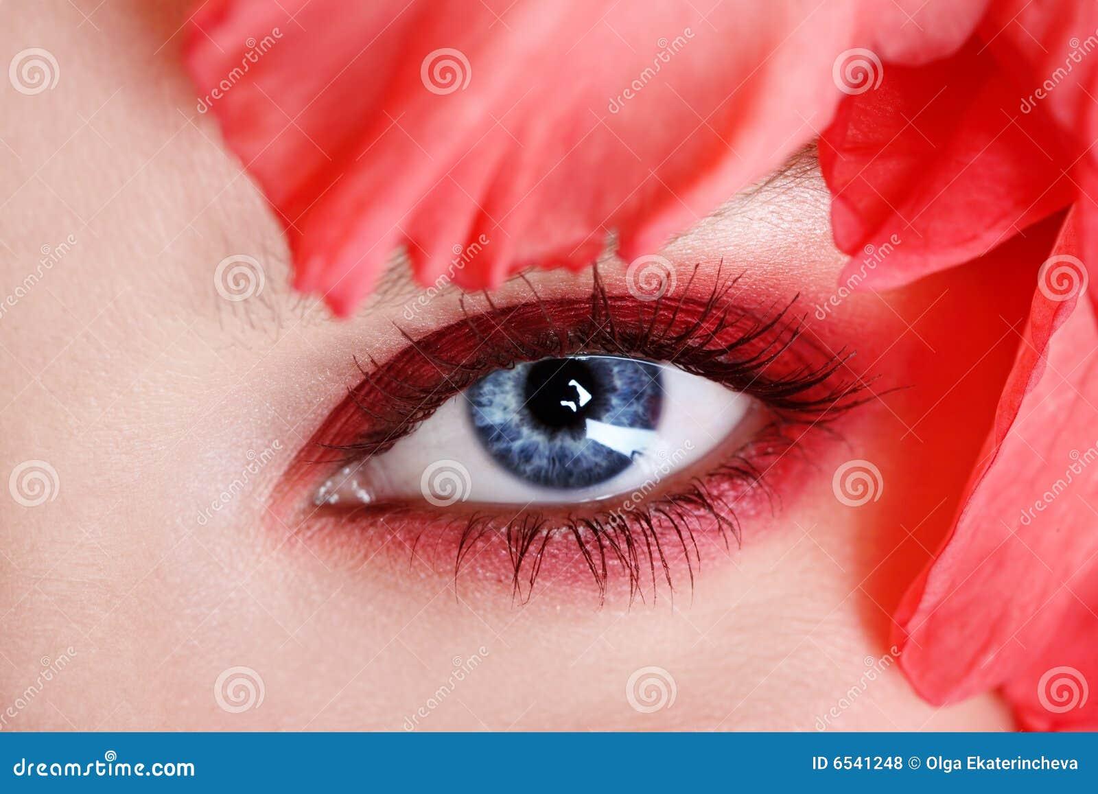 Het oog van de vrouw