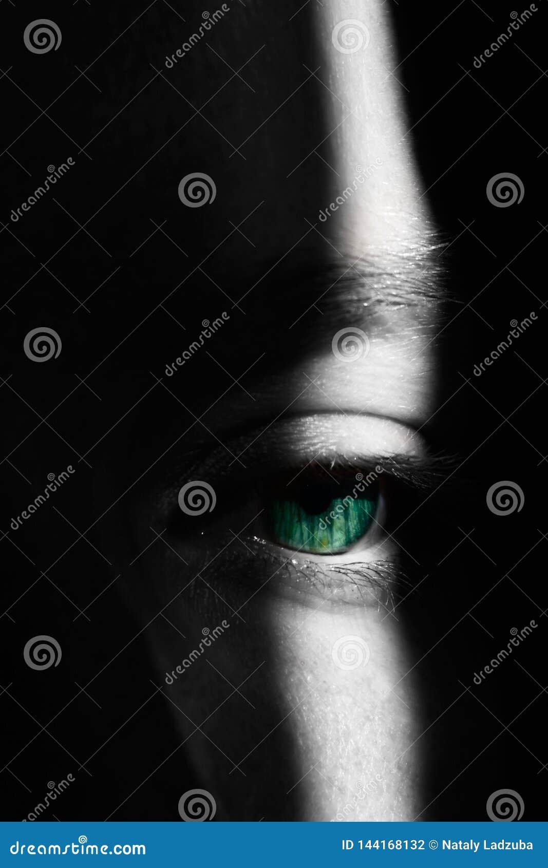 Het oog van het meisje in Hoogtepunt en Schaduwen