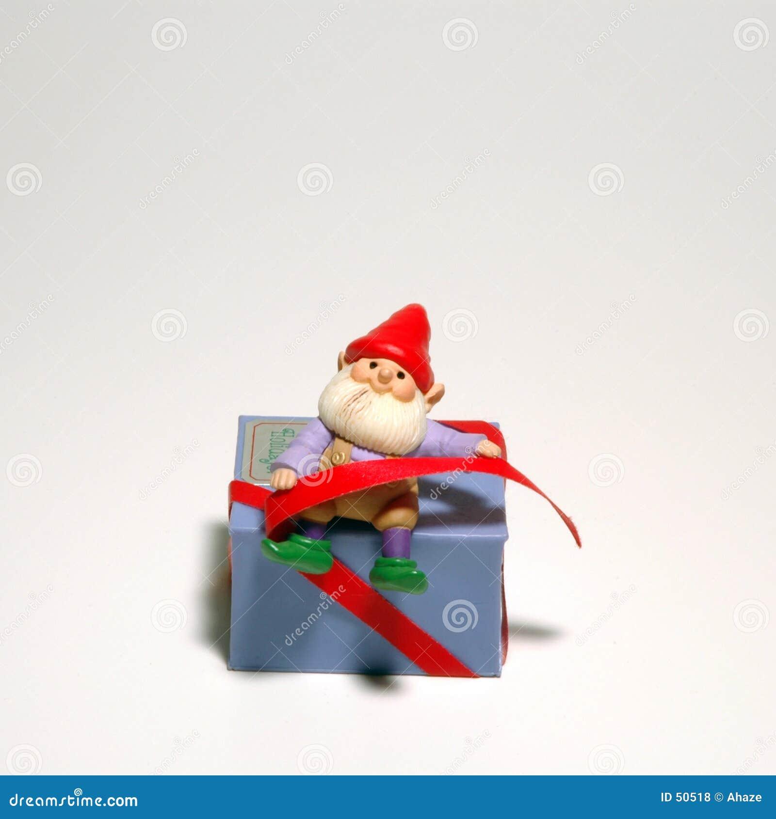 Het Ornament van het elf