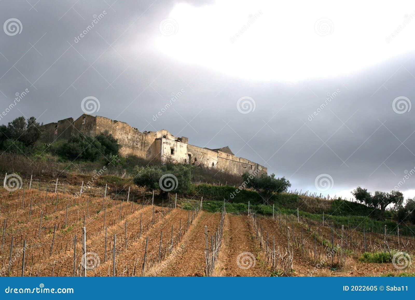 Het oude landbouwbedrijf _ Wijngaarden van het landbolwerk. Gebieden & Bomen