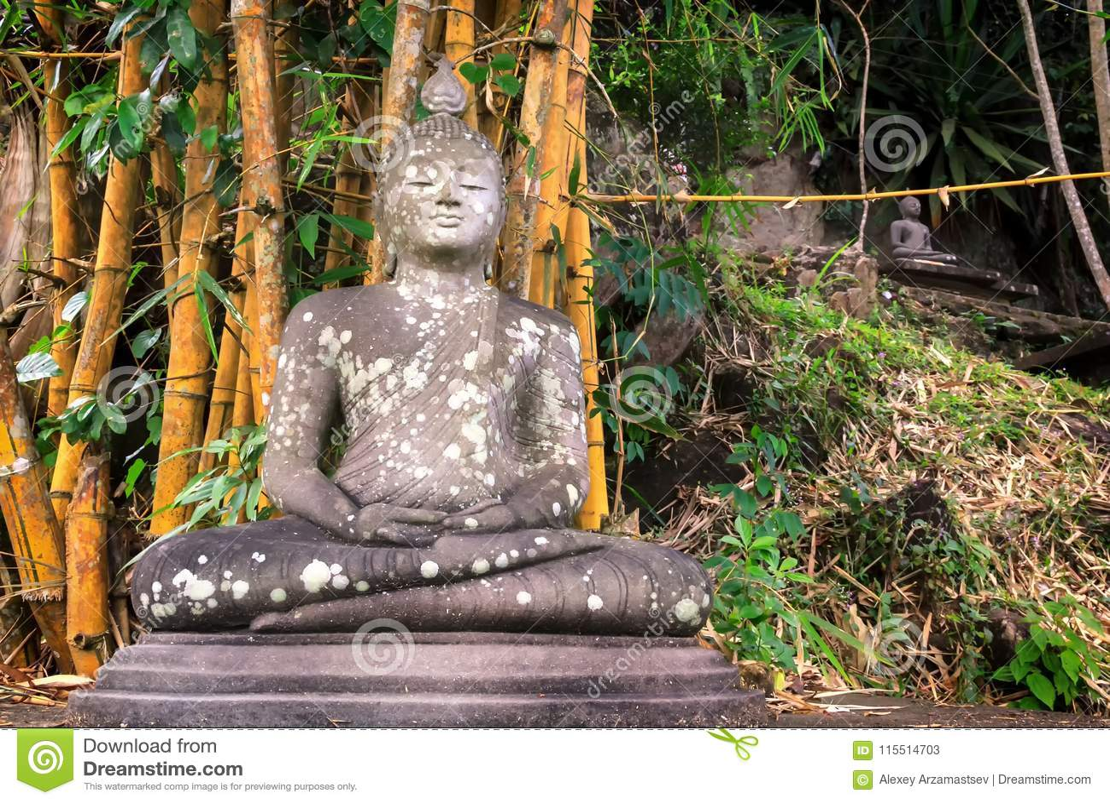 Het oude standbeeld van Boedha in meditatie onder een regenwoud